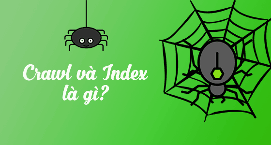 What is crawl and index