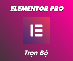 Elementor-Banner300x250.png